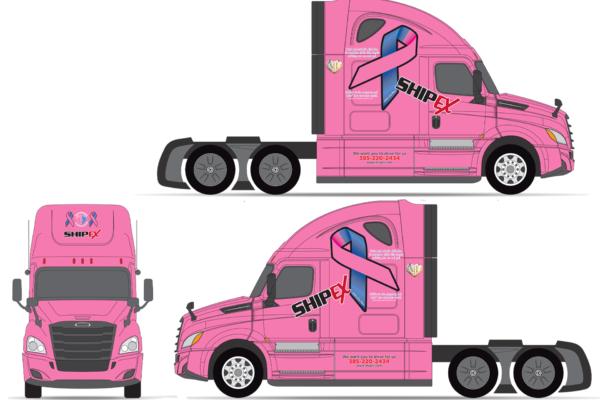 ShipEX Pink Infant Loss Ribbons FRT